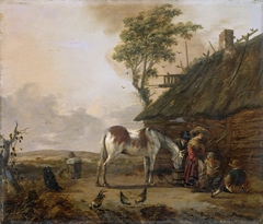 A Piebald Horse