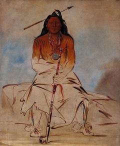 Ah-sháw-wah-róoks-te, Medicine Horse, a Grand Pawnee Brave