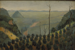Cafezal - Campinas, 1830