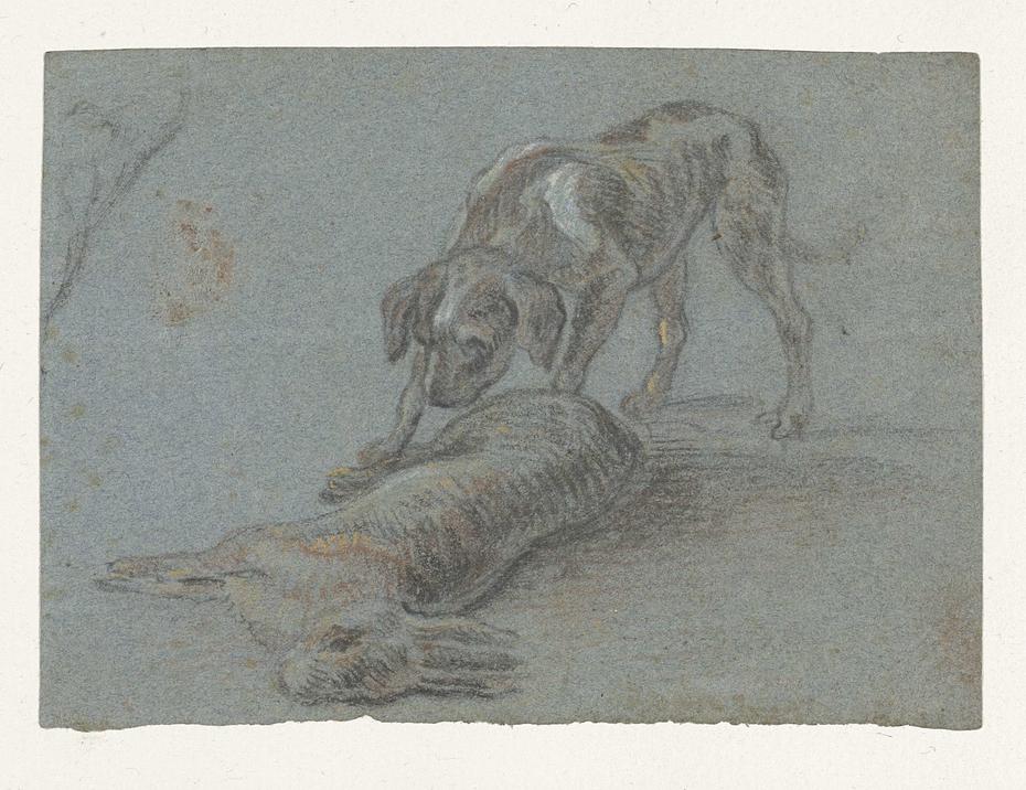 Hond bij een geschoten haas