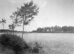 Juniaften. Landskab ved Rørvig