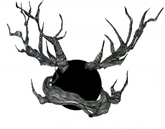 My horns
