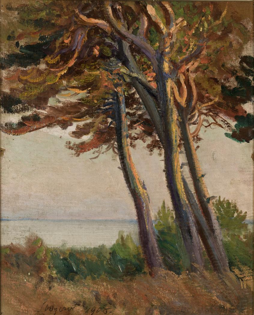 Pines at Połąga
