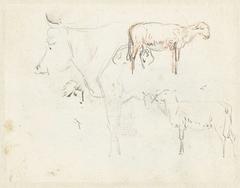 Schetsen van een koe en schapen