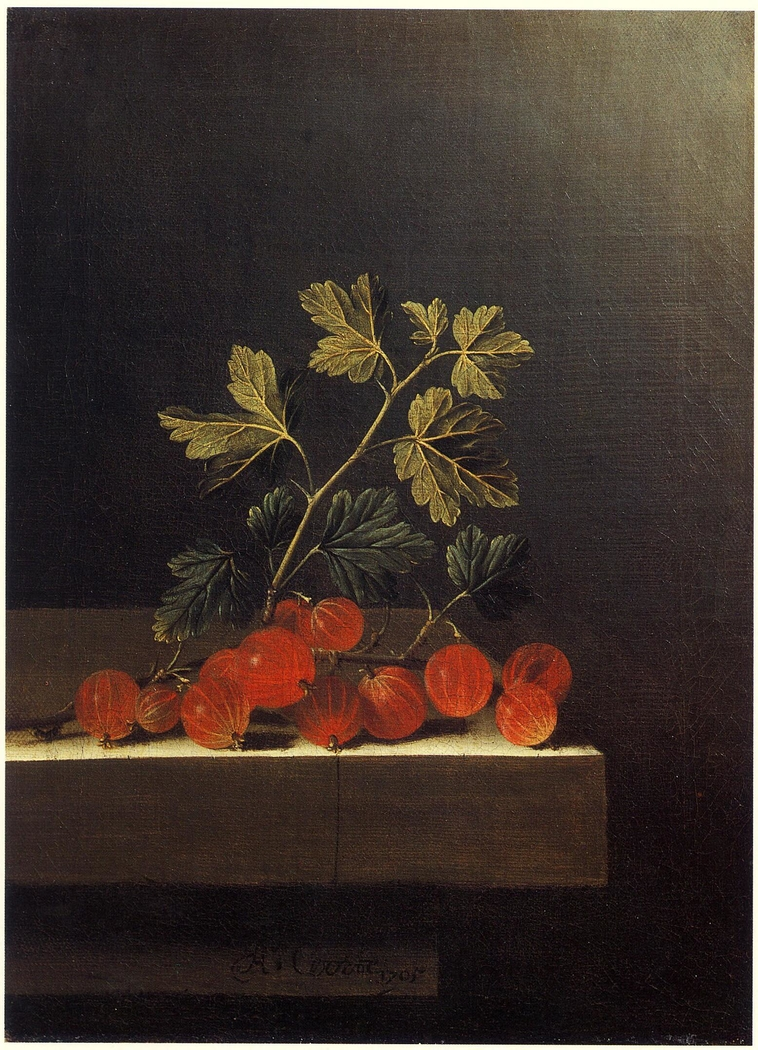 Spray of Red Gooseberries on a Stone Plinth