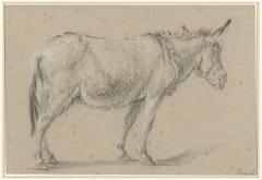 Staande ezel, naar rechts