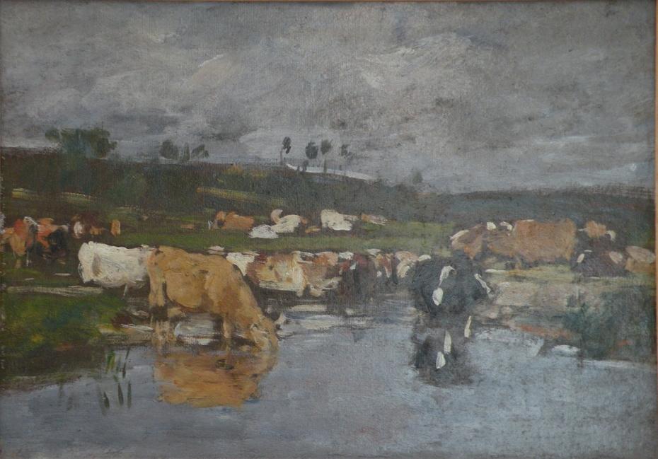 Paysage Nombreuses vaches à l'herbage