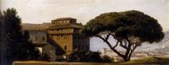 Vue du couvent de l'Ara coeli : le pin parasol