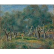 Avenue des oliviers