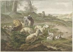 Bokken en schapen in een heuvelachtig landschap