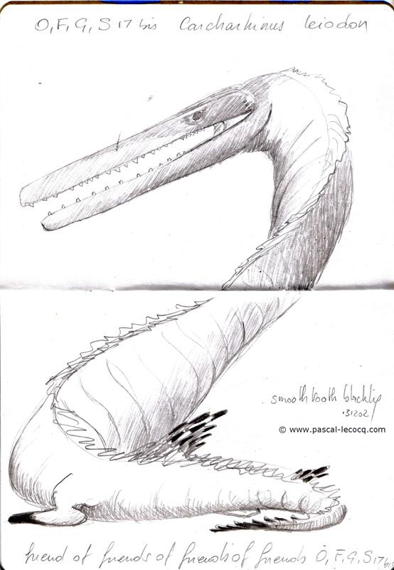 Carnet Bleu: Encyclopedia of…shark, vol.XI p 14 - by Pascal