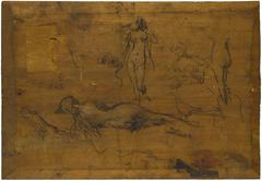 Fillette au ruban bleu (recto) / Cinq études de nus, un paon et une tête de profil (verso)