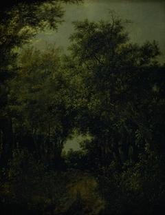 Road in an Oak Forest
