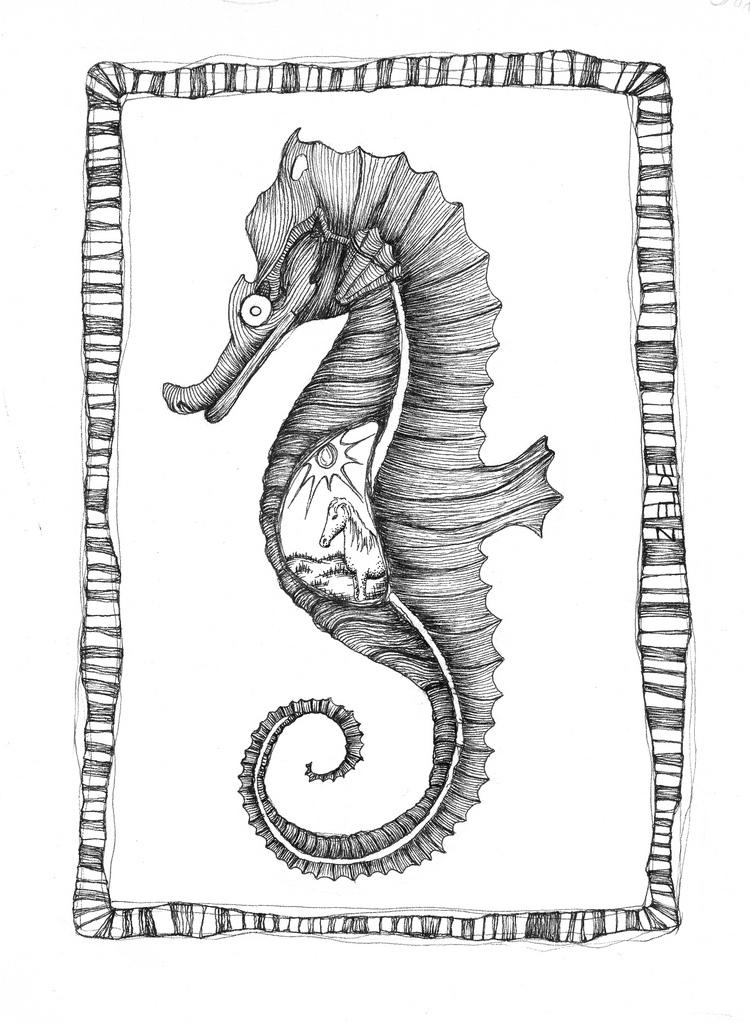 Seahorse & The Equine