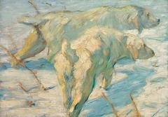 Siberian Shepherd Dogs