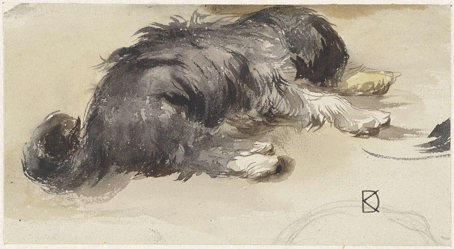 Slapende hond, van achteren gezien