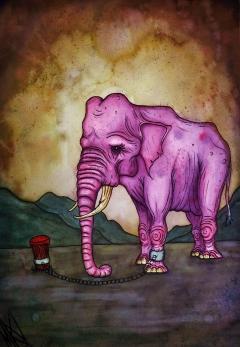 The Circuselephant
