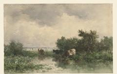 Drie koeien aan een plas