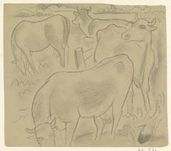 Drie koeien en een paard in een weiland