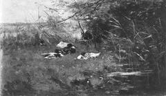 Eenden in het gras bij sloot