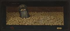 Fresh Roasted(Peanuts)