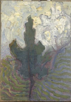 Single tree silhouette