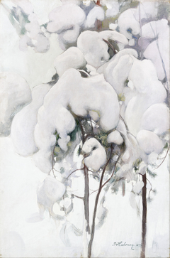 Snow-Covered Pine Saplings