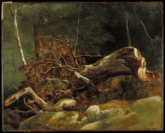 The Fallen Branch, Fontainebleau