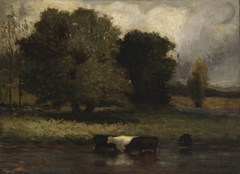 Untitled (Four Cows Wading in Pond)