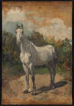 Bachelier, cheval de l'artiste