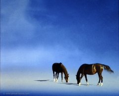 CHEVAUX - Horses -  by Pascal