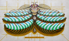 Fibonacci moth