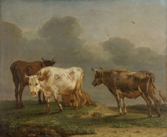 Four Cows in a Meadow
