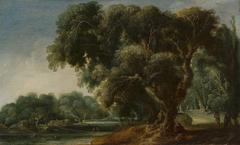 Imaginary Wooded Landscape