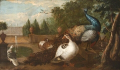 Peacocks with Duck, a Rabbit and other Fowl in an Ornamental Garden