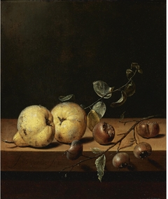 Quinces and Medlars on a Table Ledge