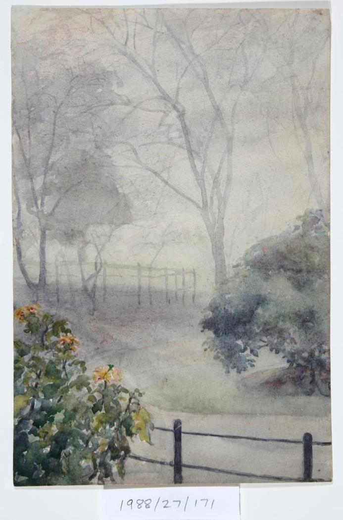 Untitled (Garden in fog)