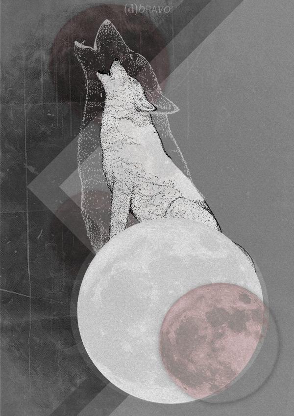 Wolf return