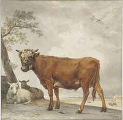 A bull and sheep in a landscape