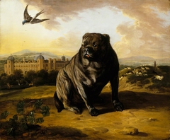 A Dutch Mastiff (called 'Old Vertue') with Dunham Massey in the background