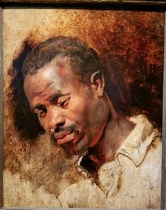 Head of a Moor (by Peter Paul Rubens?)