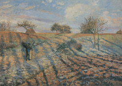 Hoar-Frost at Ennery