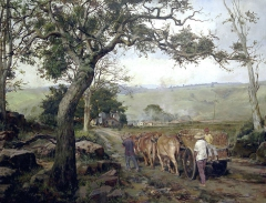 Landscape in summer