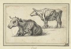 Liggende en een staande koe