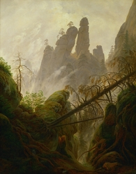 Rocky ravine in the Elbe Sandstone Mountains