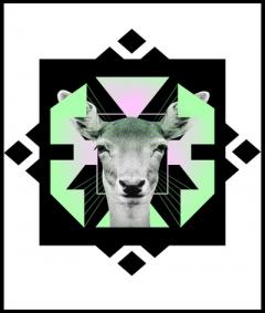 ::Space Deer::