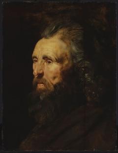 Study of a Man's Head