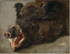 The Head of a Wild Boar