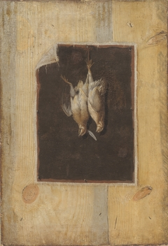 Trompe l'Oeil. Board Partition with a Still Life of Two Dead Birds Hanging on a Wall