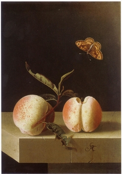 Two peaches and a fritillary butterfly on a stone plinth